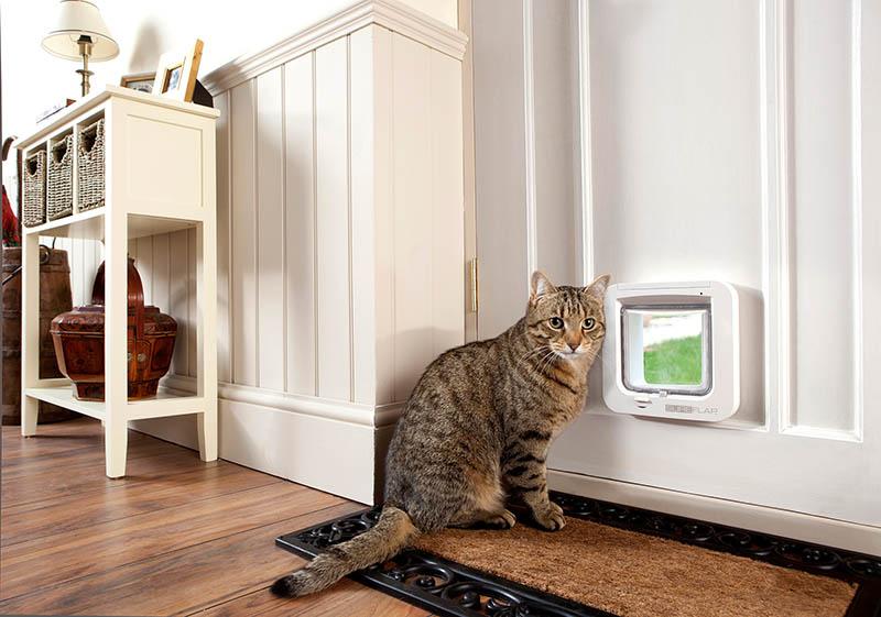 pet door installer